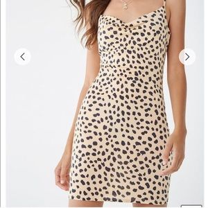3/$30 Forever 21 Cowl Neck Cheetah Dress